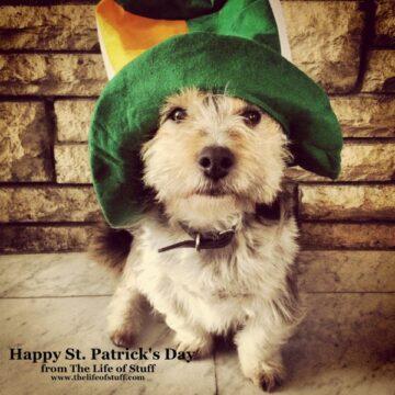 Happy St Patrick's Day 2013