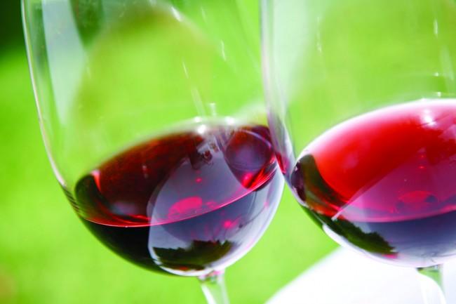 Pinot Noir e1376511285979