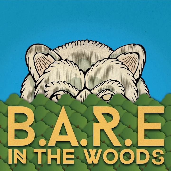 BARE in the Woods Music Festival Ireland