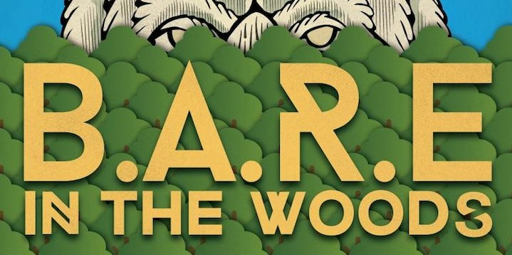 BARE in the Woods Music Festival Ireland1
