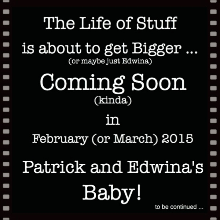 The Life of Stuff is about to get bigger - Edwina is Pregnant