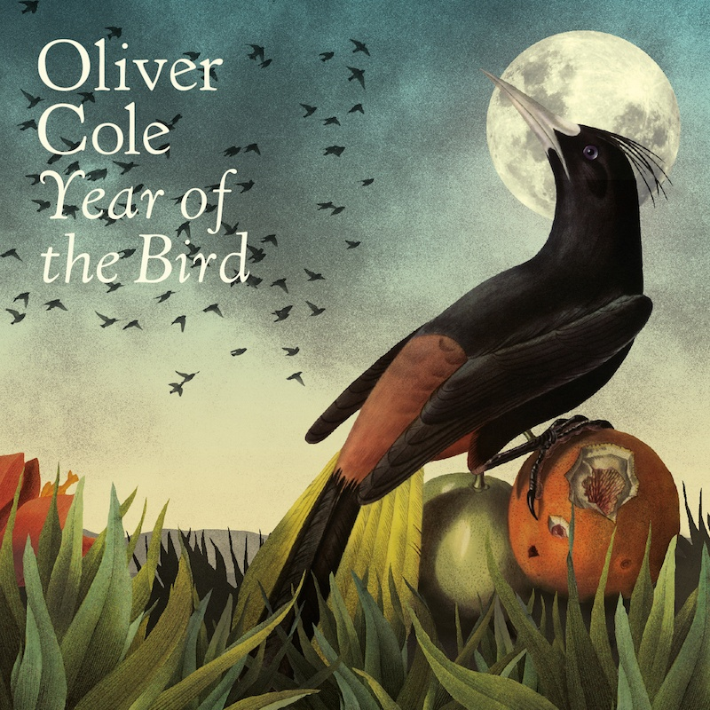 Win Tickets to Oliver Cole at Whelan's Dublin
