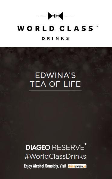 Edwina Elizabeth World Class Cocktails at Rustic Stone, Dublin