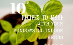 10 Things to do with Your Windowsill Herbs