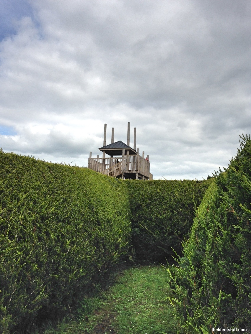 A Family Day Out at The Kildare Maze, Naas, Co. Kildare
