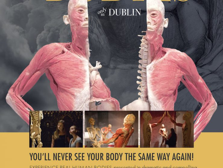 """REAL BODIES only in Dublin"" at the Ambassador Theatre plus Win Tickets to the Opening Here!"