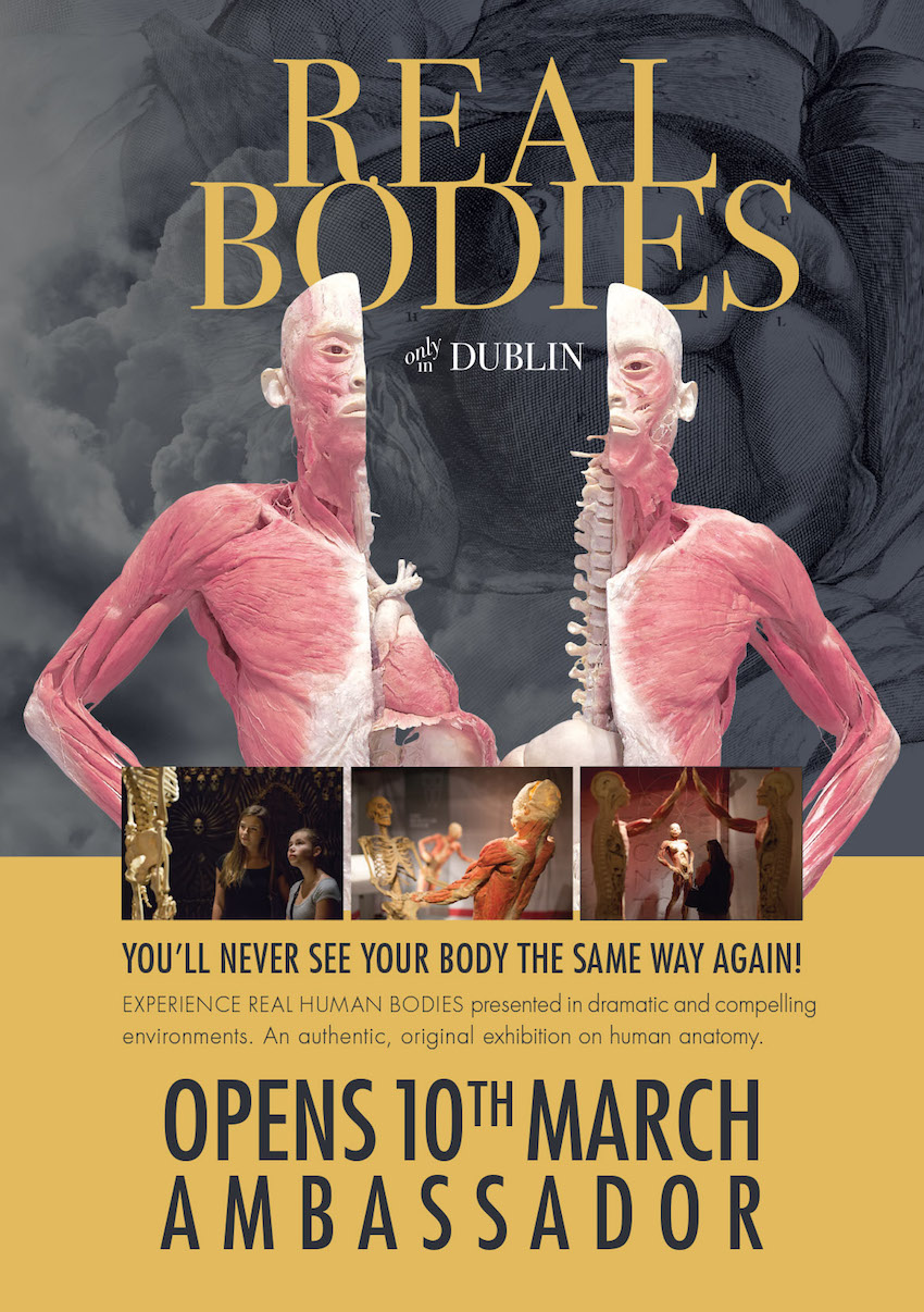 """""""REAL BODIES only in Dublin"""" at the Ambassador Theatre plus Win Tickets to the Opening Here!"""