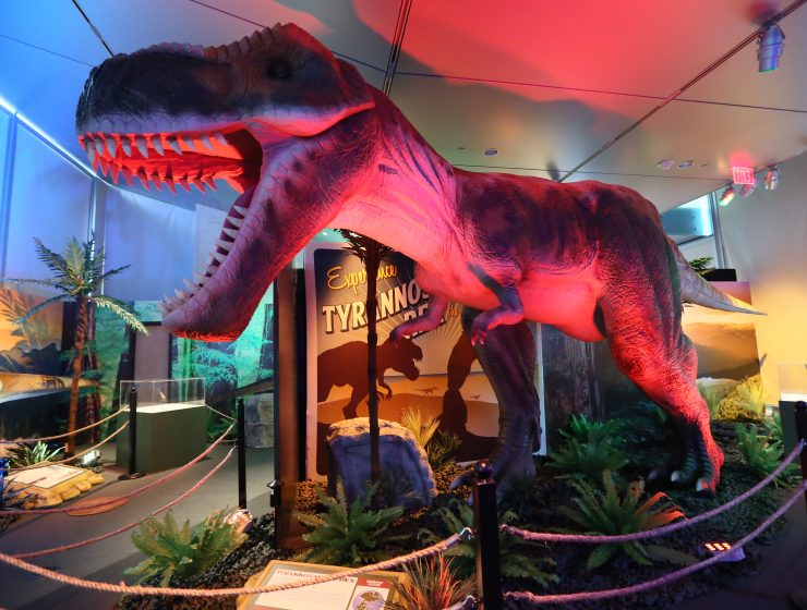 Dinosaurs Around The World 'Dublin' - Win One of Two Family Passes