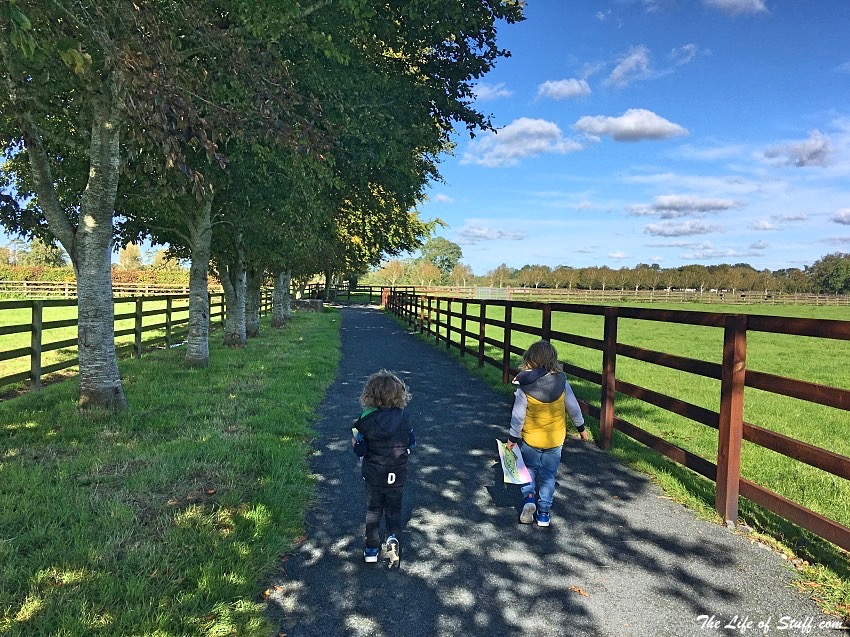 Get Into Kildare - A Fun Family Weekend Experience - The Life of Stuff
